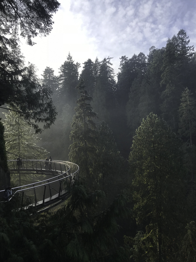 The Reluctant Photographer - Capilano Cliffwalk.jpg