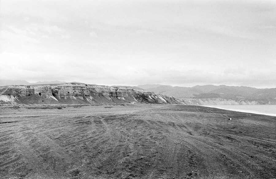 Fuji Neopan 400 - Whitetbaiters View from Lake Ferry Beach.jpg