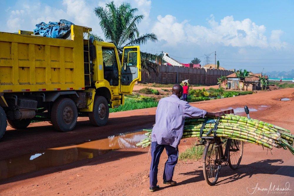 Man carrying sugarcane on his bike, Kampala