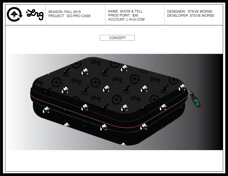 LRG-CASE-3.jpg