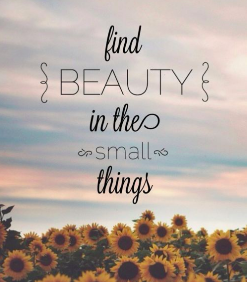 Beauty in the small things