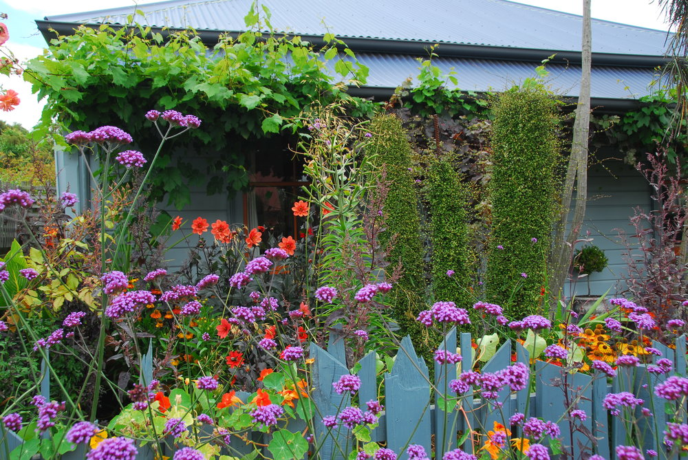 ROBIN KILTY'S GARDEN   A tiny city garden in which gardener and writer Robyn Kilty is very obviously having a lot of fun! Colours used in the garden appear appear on house doors and windows, so that the two are in perfect chromatic unity!