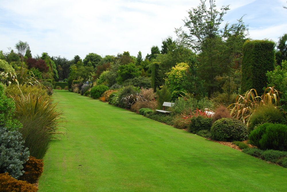 BROADFIELDS   Created by David Hobb with the goal of creating a truly New Zealand garden. The double shrub borders are incredible, and reveal the astonishing diversity of foliage colour, foliage texture and form in the NZ flora.