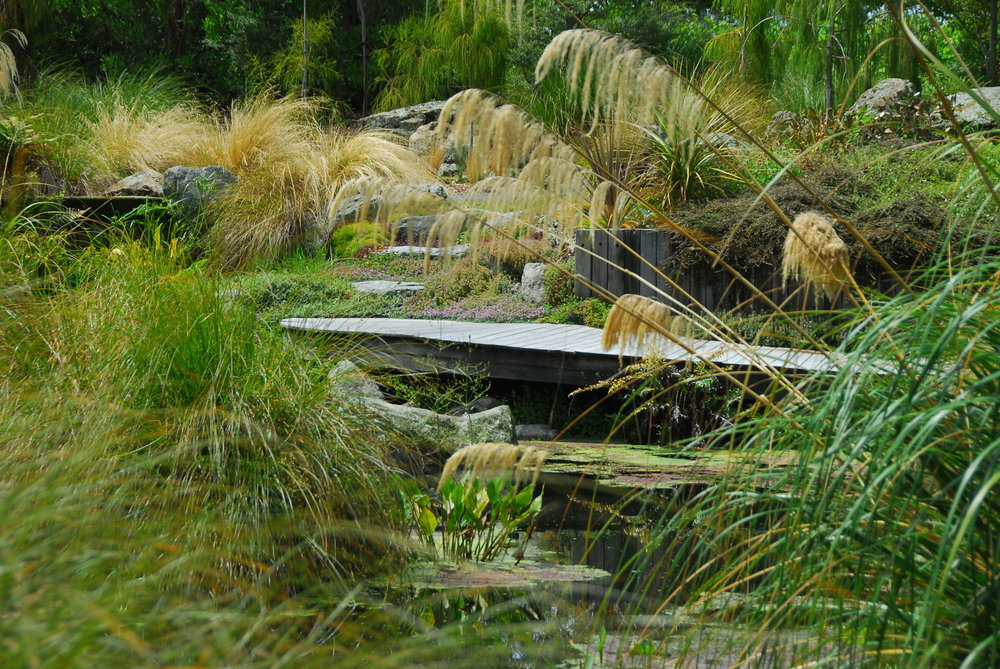 BHUDEVI   A restrained, very geometric garden within which hides an informal, sinuous native garden that transforms an old drainage dish into a magical water garden.