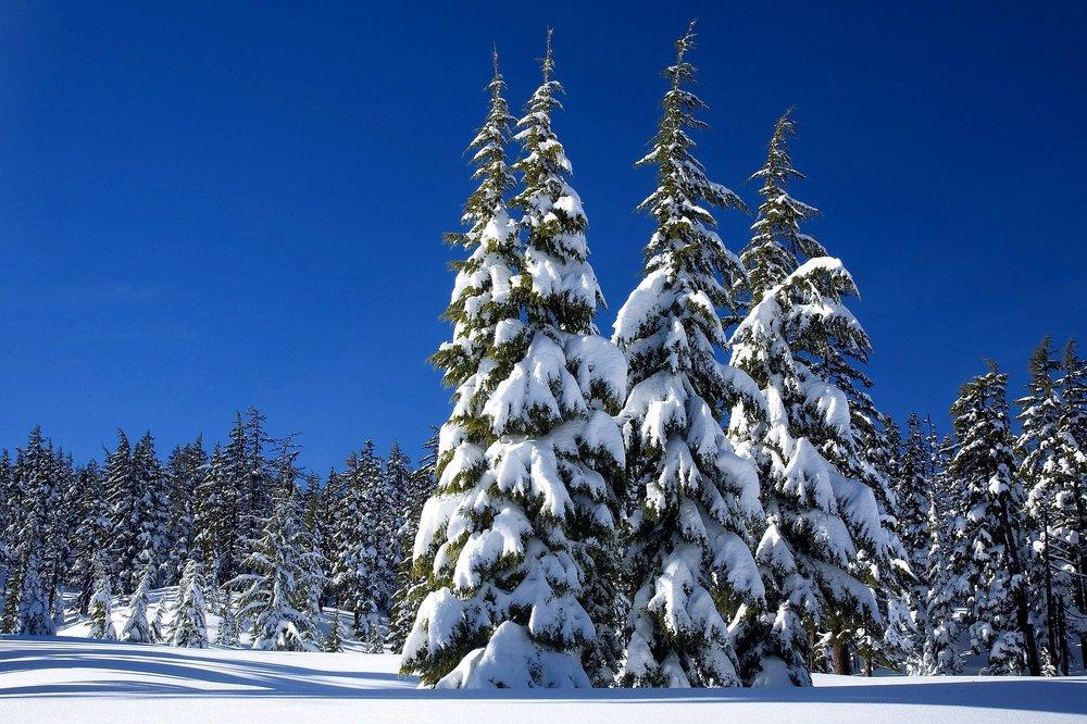 snow-kelowna