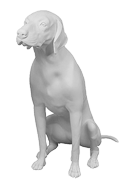 GermanShorthaired-02-s.png