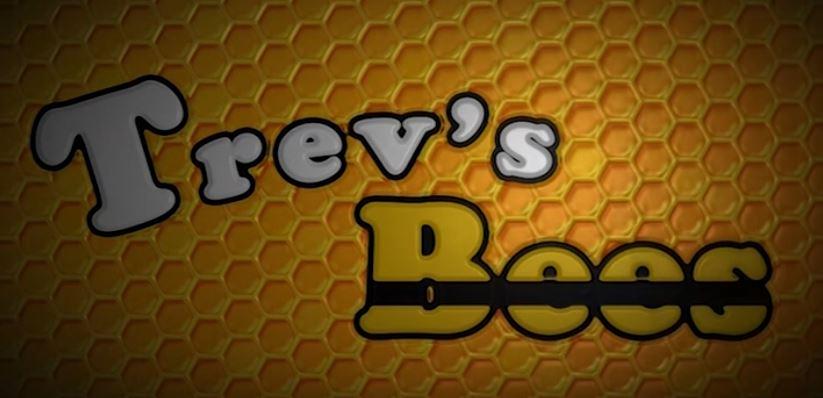 Trevs Bees.JPG