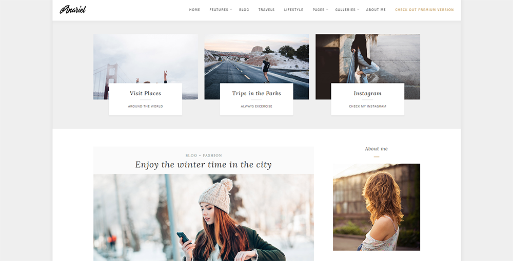 Sixty Eight Ave - anariel wordpress theme