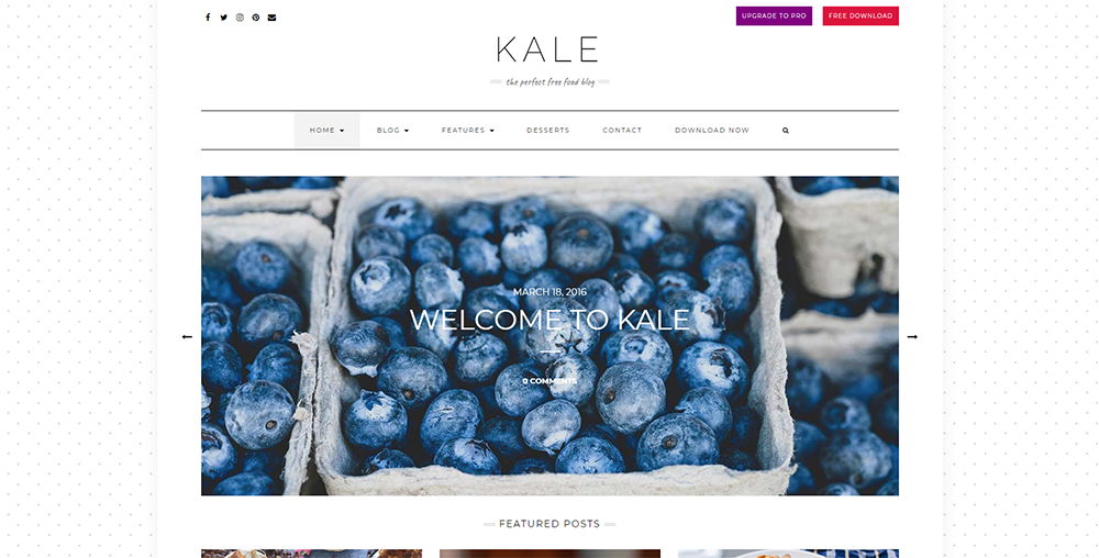 Sixty Eight Ave - kale wordpress theme