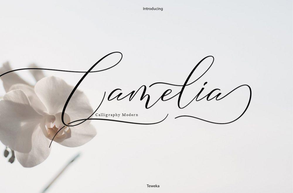 Sixty Eight Ave - 100 Stylish Fonts - Camelia
