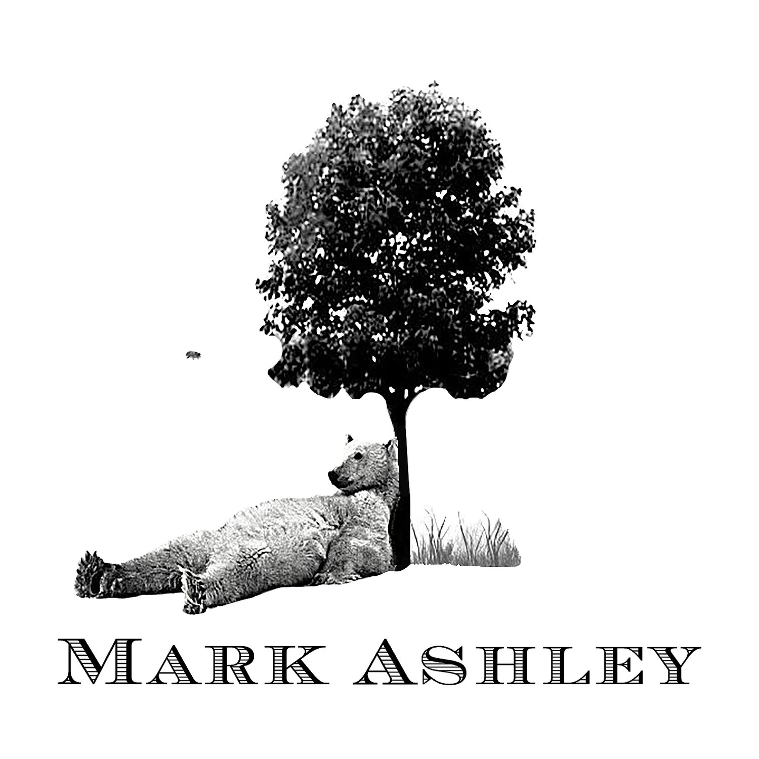 Mark Ashley Company