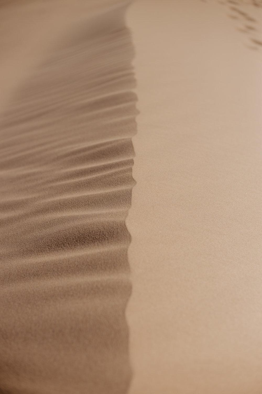 Aaron + Tessera Glamis Sand Dunes-12.jpg