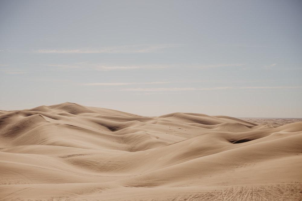 Aaron + Tessera Glamis Sand Dunes-22.jpg