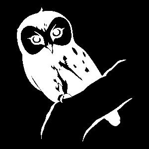 np_owl_203210_FFFFFF.png