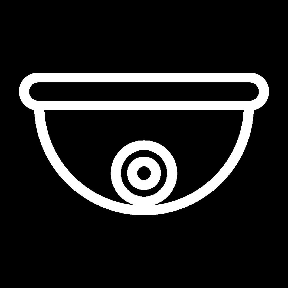 np_camera-security_1918902_FFFFFF.png