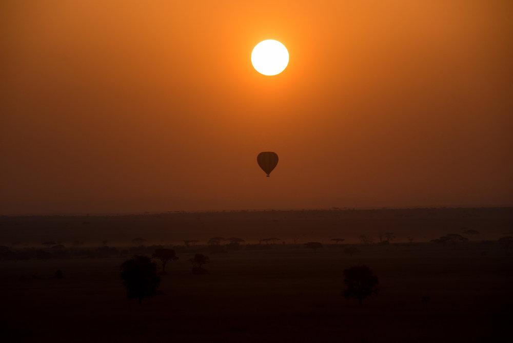 Ballon Safari 15.jpg