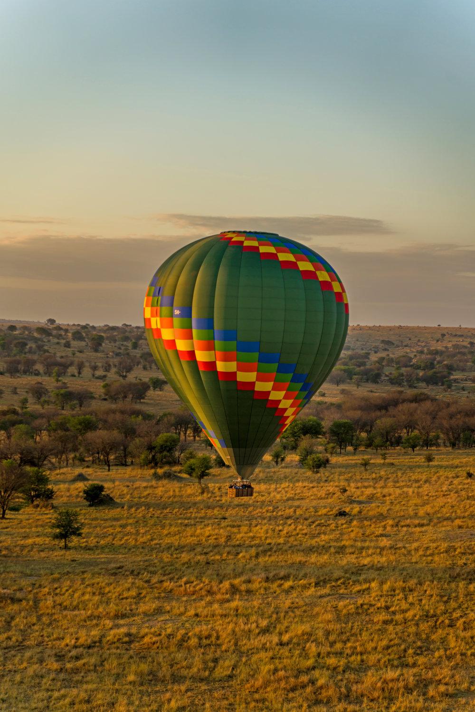 Ballon Safari 7.jpg