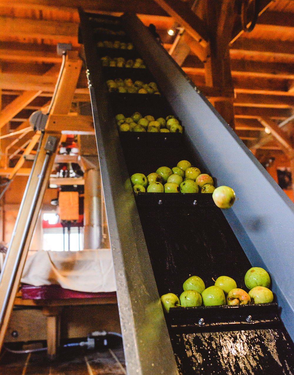 apples-on-elevator.jpg