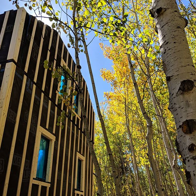 Beautiful shot from last week's install ♥️ #prefab #lowenergy #prebuilt #nederlandcolorado #colorado #autumn #fall #phoenixhaus #bringonetolife #newbreed