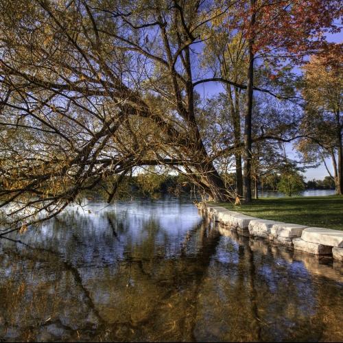 LakeOrionWall1-square.jpg
