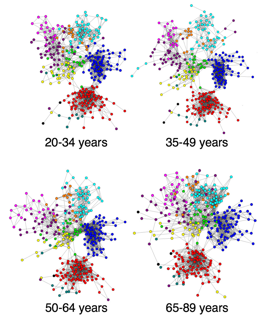Organization of functional brain networks measured using resting-state fMRI.