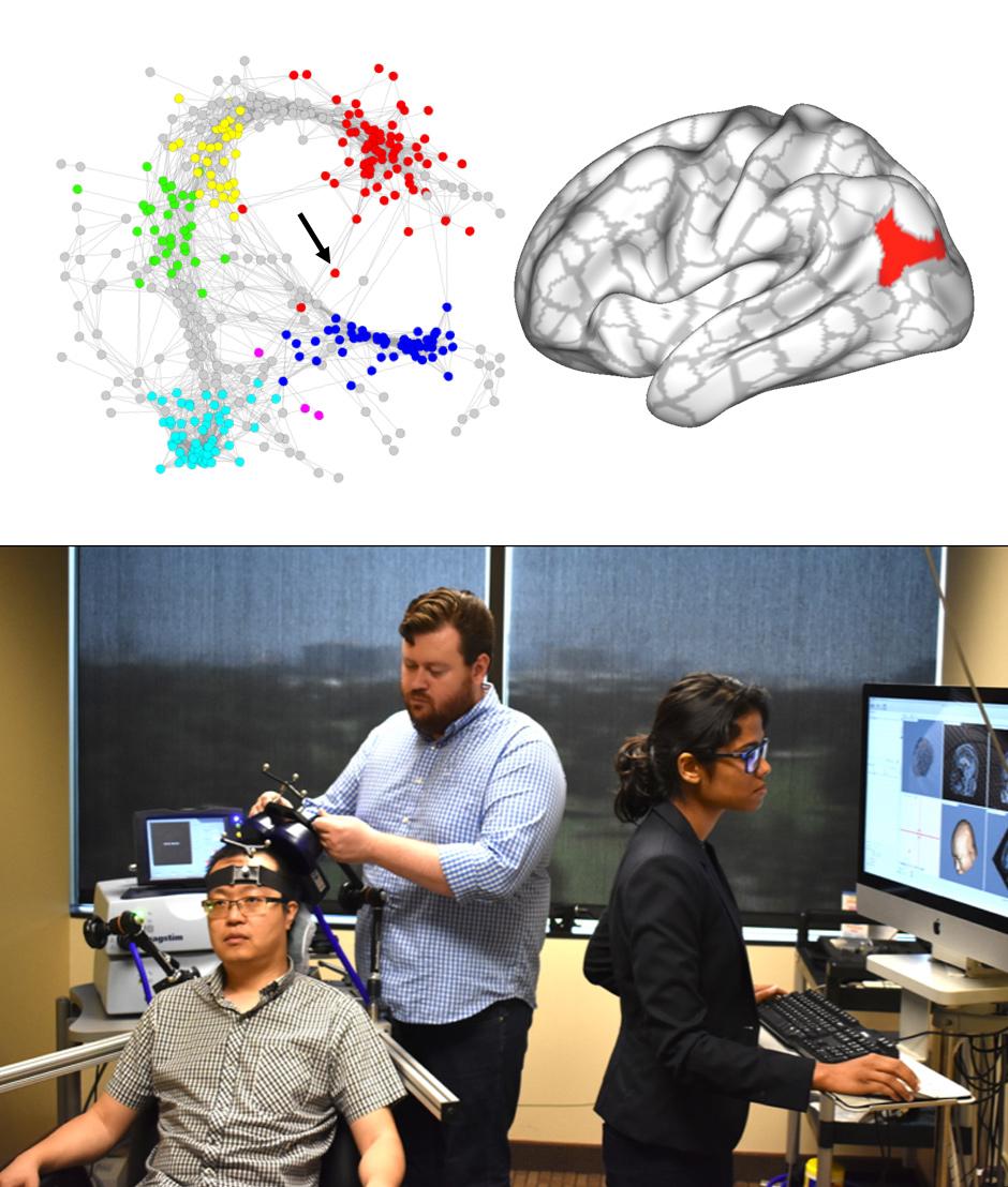 Individualized network stimulation