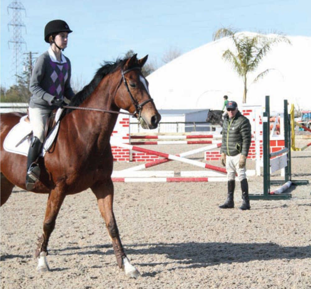 Under the watchful eye of clinician Michael Page, rider Katelyn Brooks concentrates on an exercise in her session during a free training clinic provided by the Sacramento Area Hunter Jumper Association.