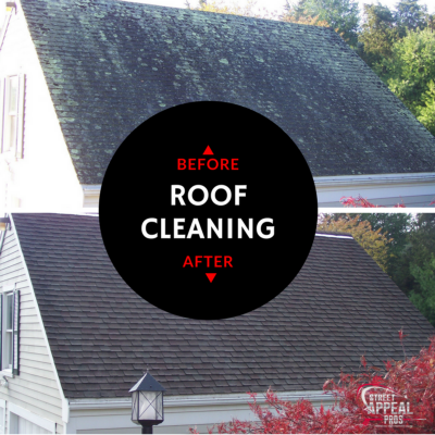 cape-cod-roof-cleaning-in-yarmouth.png