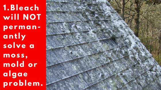 ROOF-CLEANING-CAPE-COD.jpg