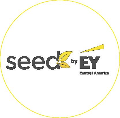 iconos servicios seed-21.png