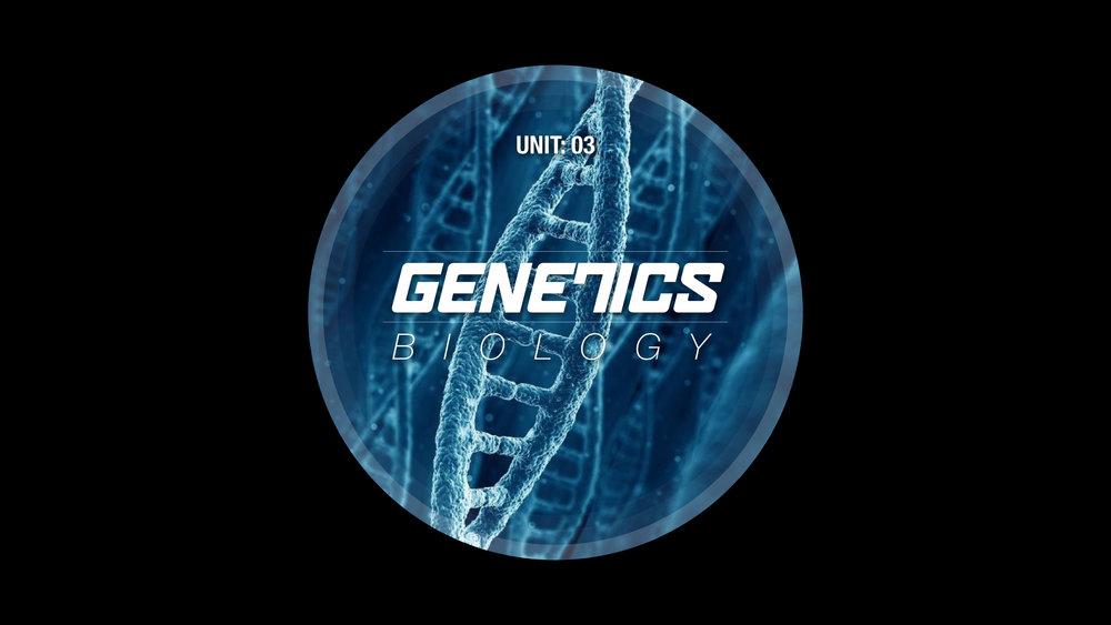 GENETICS.004.jpg