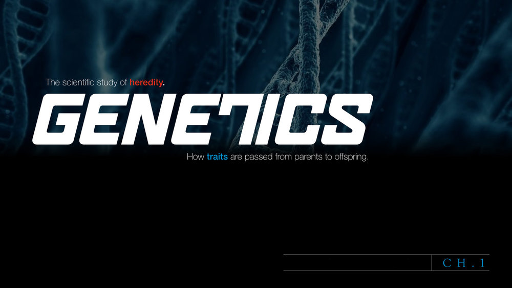 PRESENTATION DESIGN - Whether you are giving a keynote presentation in front of hundreds or need help explaining Genetics to 9th graders, we can help.