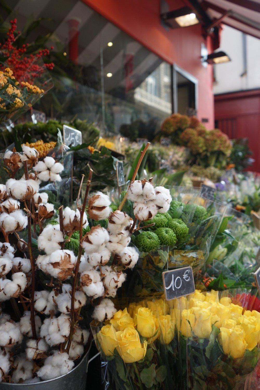 Cotton for sale in a local fleuriste