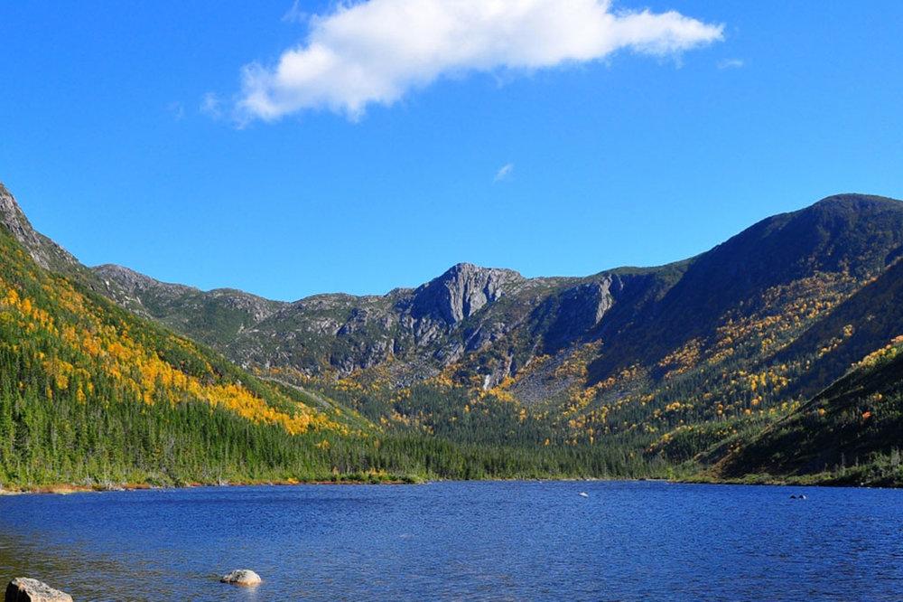 Parc de la Gaspésie - Vous êtes à 1heure des montagnes des Chics-Chocs situé dans le parc National de la Gaspésie. Nombreuses sont les activités pédestres que vous pourrez y pratiquer. Rendez-vous sur le site de la Sépaq pour découvrir toutes les activités.