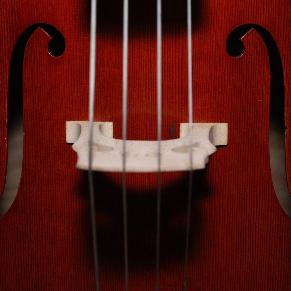 Waipio Gentry Viola Lessons -