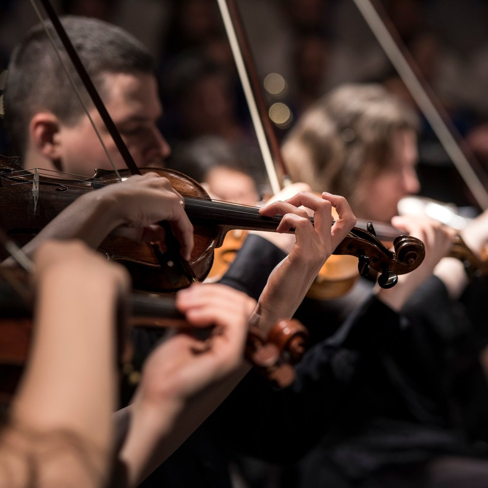Kaneohe Chamber Music Lessons -