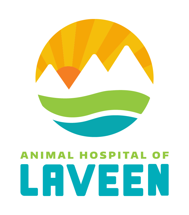 Animal Hospital of Laveen