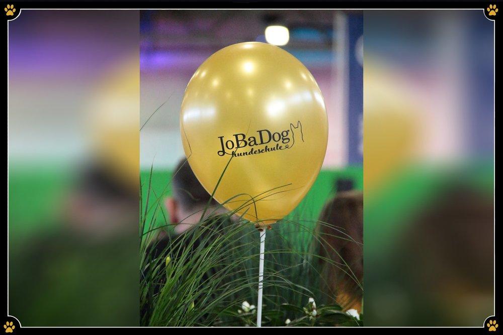 JoBaDog_Gruene_Woche_2019_Luftballon_1.jpg