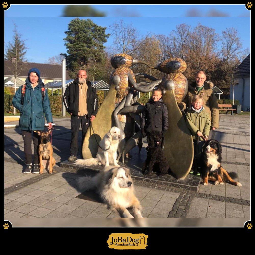 JoBaDog_Alltagstraining_17_Nov_2018_Hohen_Neuendorf.jpg