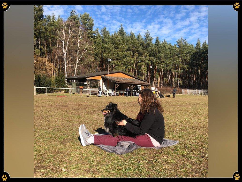 JoBaDog_Massage_Seminar_24_Feb_2019_10.jpg