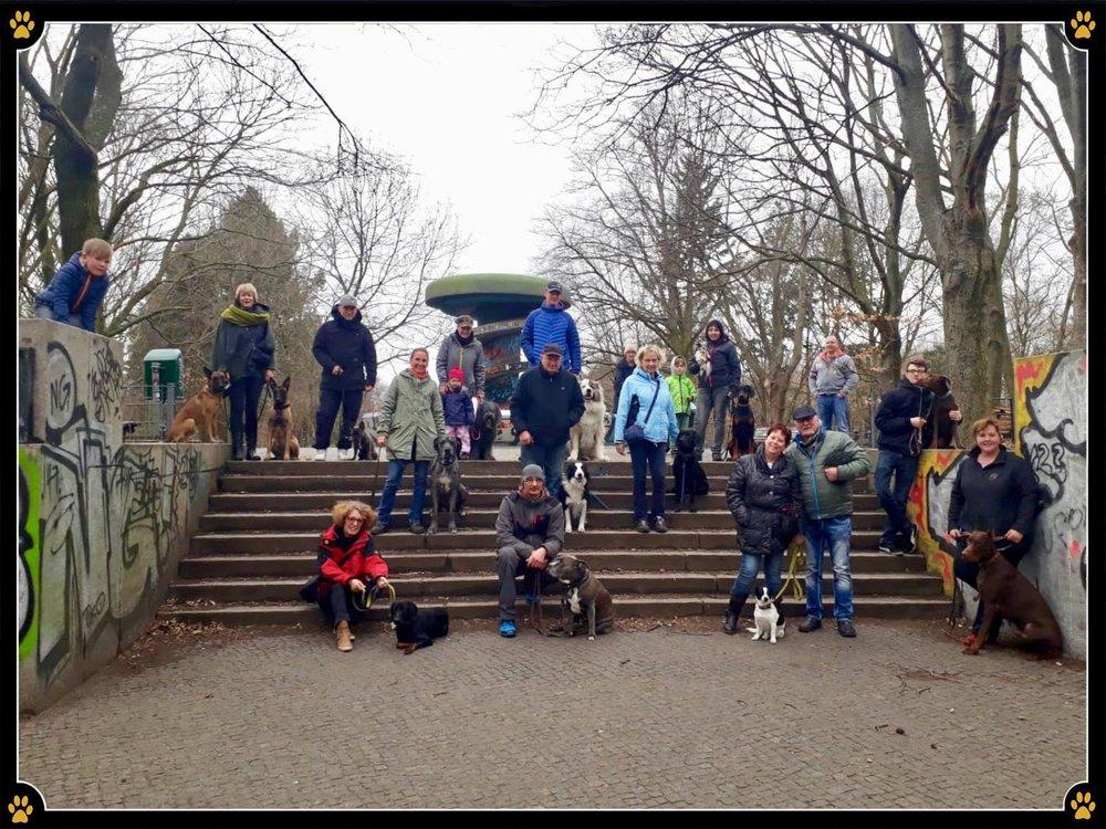 JoBaDog Alltagstraining in den 'Berliner Rehbergen'. - Der Name war leider nicht Programm. 😣Rehe, Wildschweine und Co. schienen regelrecht ausgeflogen.🐗🦌Also hieß es schnell umswitchen auf ein Training zwischen Joggern, Radfahrern und freilaufenden Hunden. Denn auch das erfordert höchste Konzentration von unseren Wauzis. Keine Jogger jagen, keine Radfahrer zu Fall bringen und auf keinen Fall zu den spielenden Hunden rennen - manchmal gar nicht so einfach. 😜Schön, dass Übung auch hier den Meister macht. Alle Vierbeiner verließen nachher fröhlich, an lockerer Leine neben Herrchen und Frauchen den Park.💛🐾