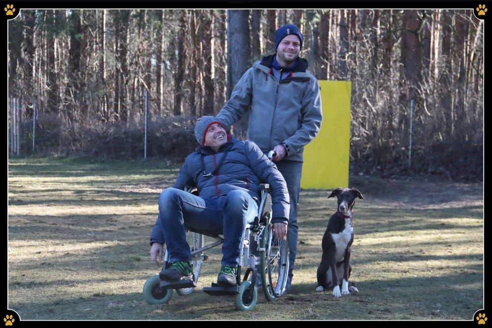 Gut gewappnet für alle Situationen - Oft genug holt das Schicksal einen schneller ein als man glaubt und man hat als Hundebesitzer mit einem Menschen im Rollstuhl zu tun. ♿️🐾 Für den Hund, der es nicht kennt, eine seltsame Begebenheit, denn dann verlangen die Besitzer oft sofortige Disziplin❗️ Es kann schlimme Folgen haben wenn der Hund um den Rollstuhl rennt, unter die Räder gerät, diesen weg reißt oder gar auf ihn springt. 😖Das muss also vorher geübt werden.So ernst die Situation für die man übt aber auch ist, darf im Training der Spaß nicht fehlen.☺️