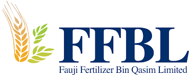 ffbl.png