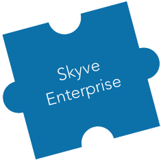 skyve-enterprise.png