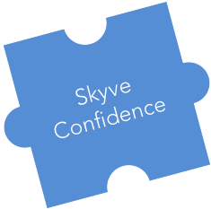 skyve-confidence.png