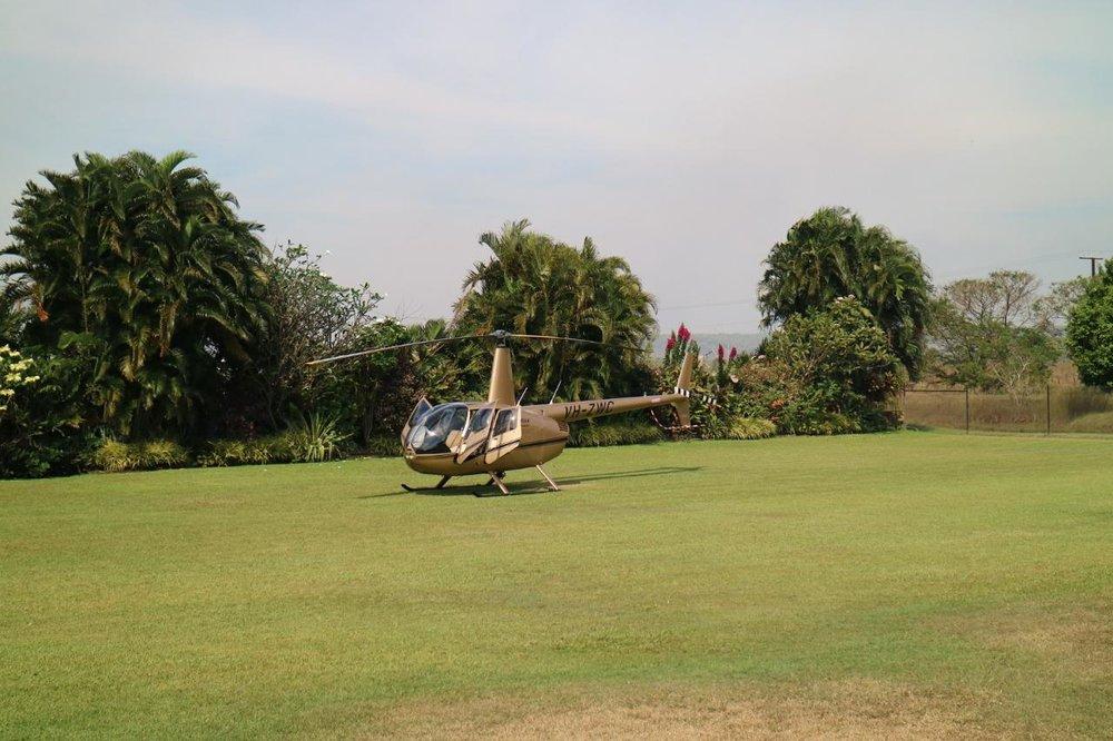Airborne_20_lg.jpg