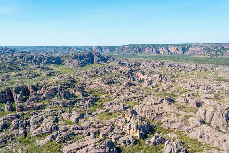 Dinosour-Valley---Dry---60-minute.jpg