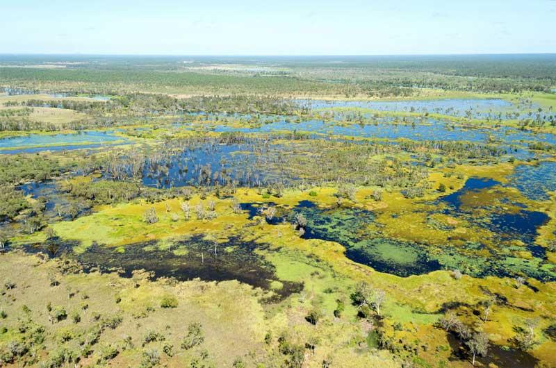 Magela-Flood-Plain--Dry--60-Minute-&-Day-Tour---Dry-&-Wet---30-Minute-(2).jpg