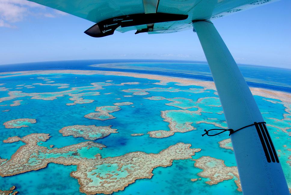 hardy-lagoon-the-river-hook-reef.jpg