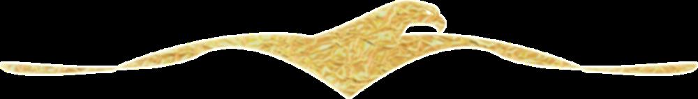 Anwalt Strafverteidiger Logo Freiburg - Rappaport Stolterfoth.png